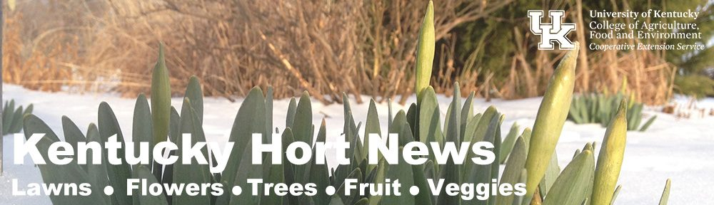 Kentucky Hort News